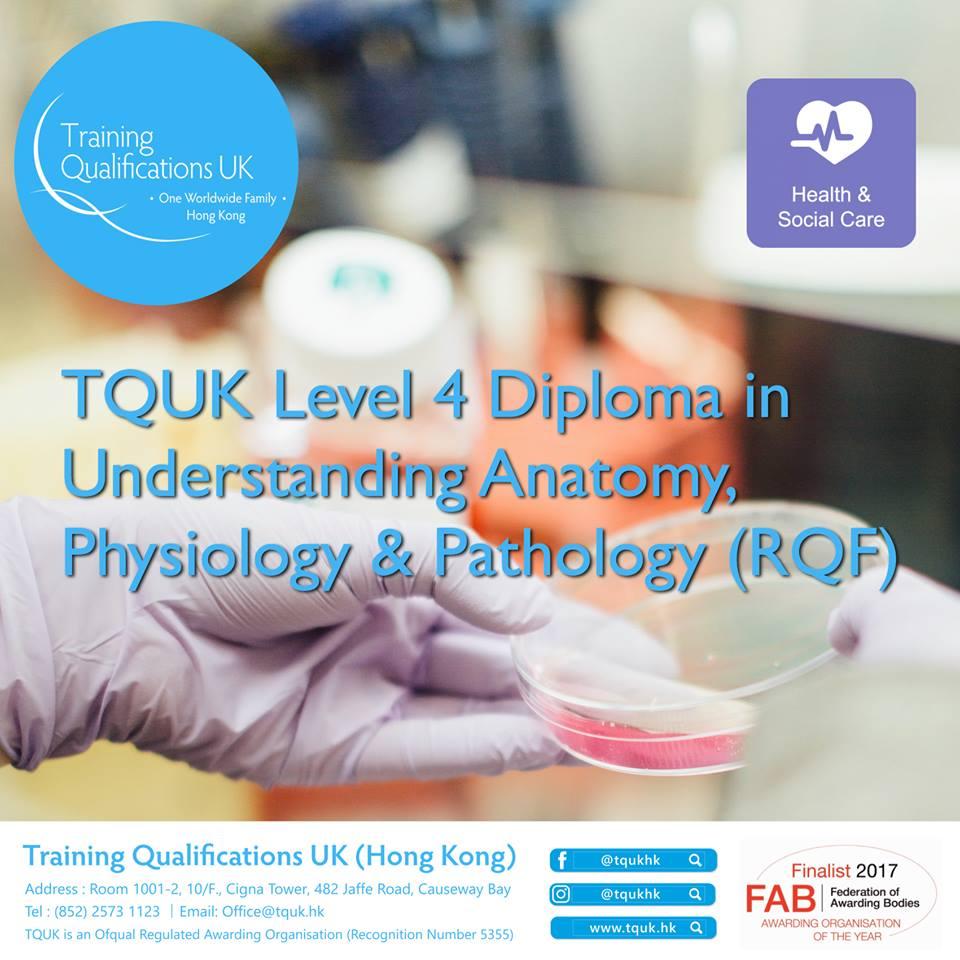 英國 TQUK 四級解剖學、生理及病理學證書 (RQF)